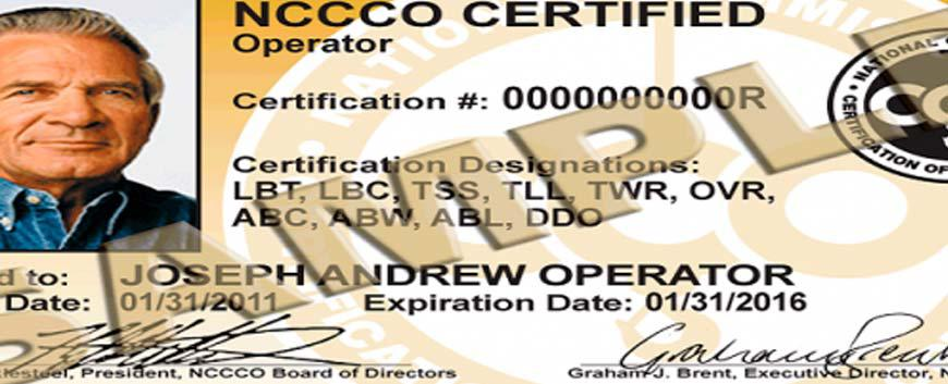 What Everybody Is Saying About Overhead Crane Safety and What You Should be Doing